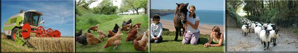 Explore the farm at Pickwell Barton or head to the beach for a family day out.