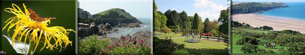 Enjoy exploring the wonderful countryside of North Devon.