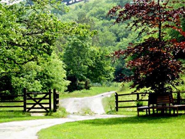 There is beautiful countryside to be enjoyed when you stay at New Mill Holiday Cottages,