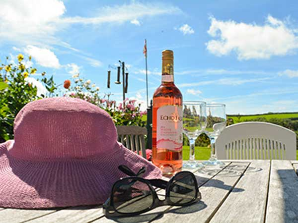 Enjoy a cool glass of wine when sitting out in the gardens of West Down B&B Guest House Devon