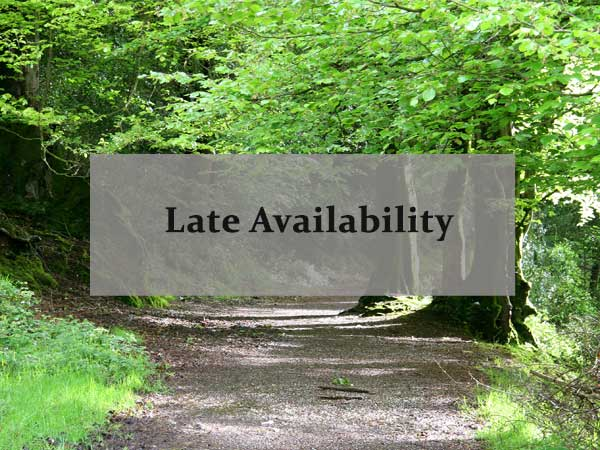 Take a look at our late availability.