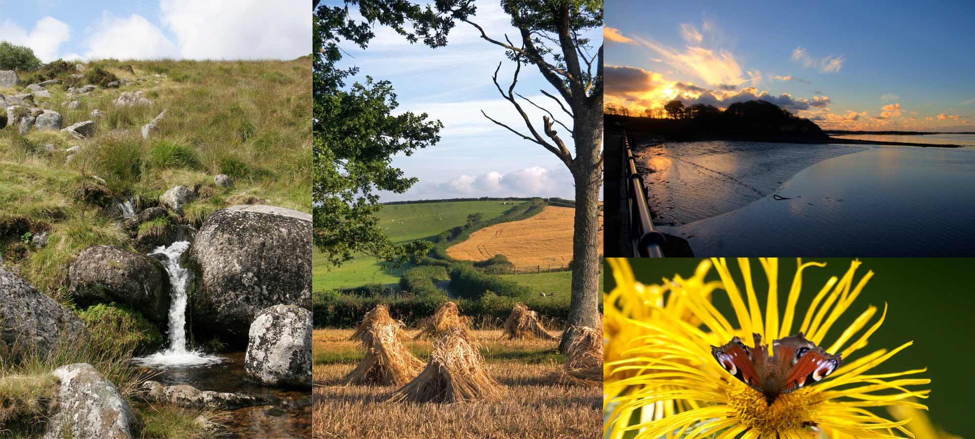 North Devon Farm Holidays