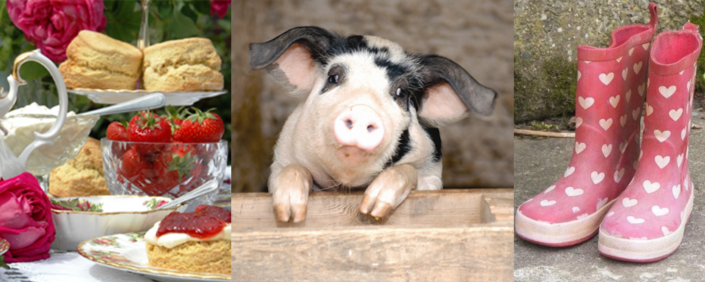 Enjoy a cream tea, grab your wellies and meet the animals on a farm holiday in North Devon.
