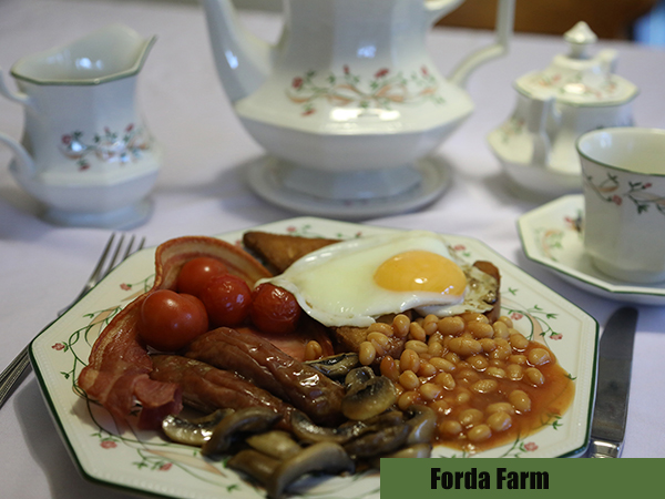 Stay at Forda Farm bed and breakfast for a enjoyable holiday.