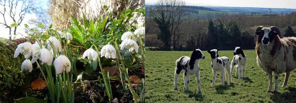 Spring is on the way here in North Devon, get your holiday booked in with North Devon Farm Holidays.