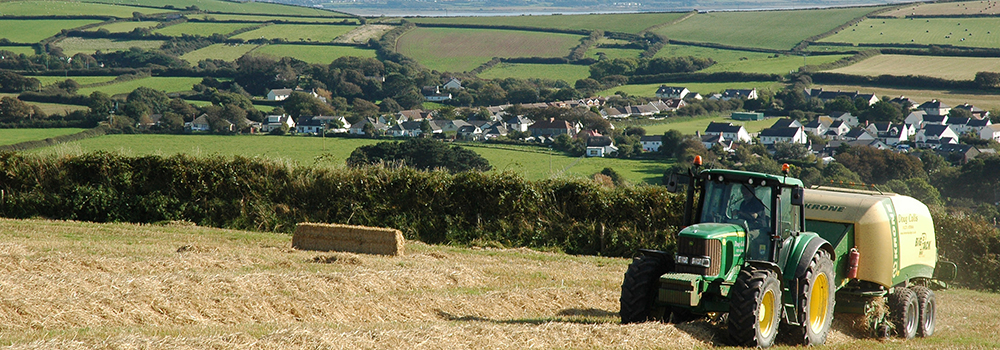 North Devon is filled with stunning countryside and lots of farming. Making it the perfect holiday destination.