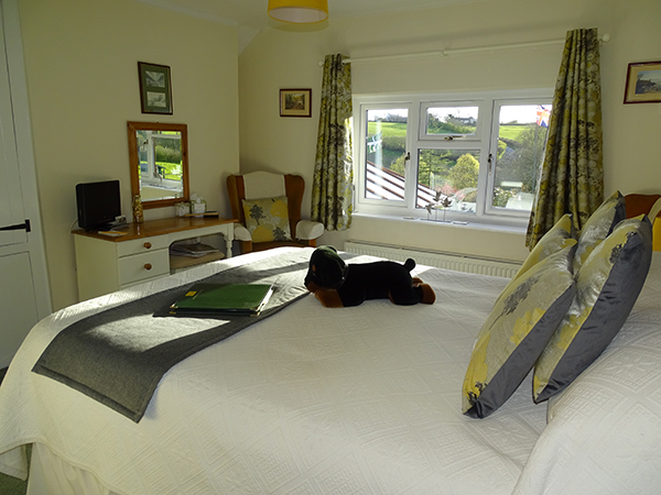 Stay in the Marwood room at West Down Guest House.