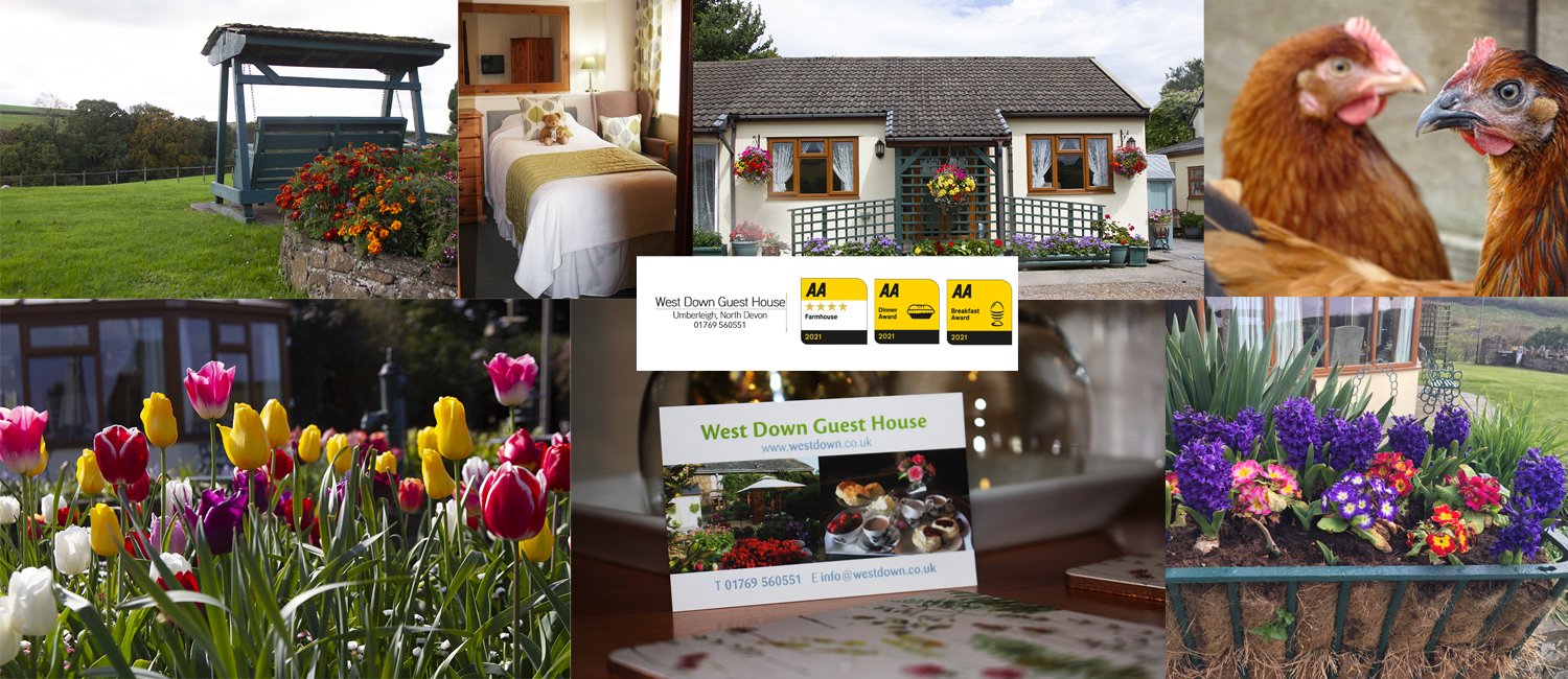 West Down Guest House is a stunning Bed and Breakfast located in North Devon.