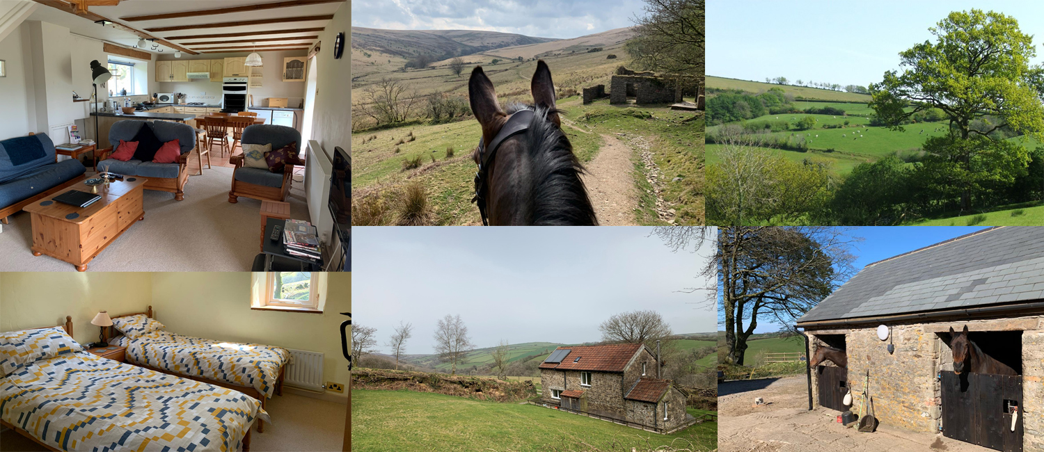 Explore Exmoor and enjoy a wonderful holiday at Hollacombe Farm where both dogs and horses are welcome.