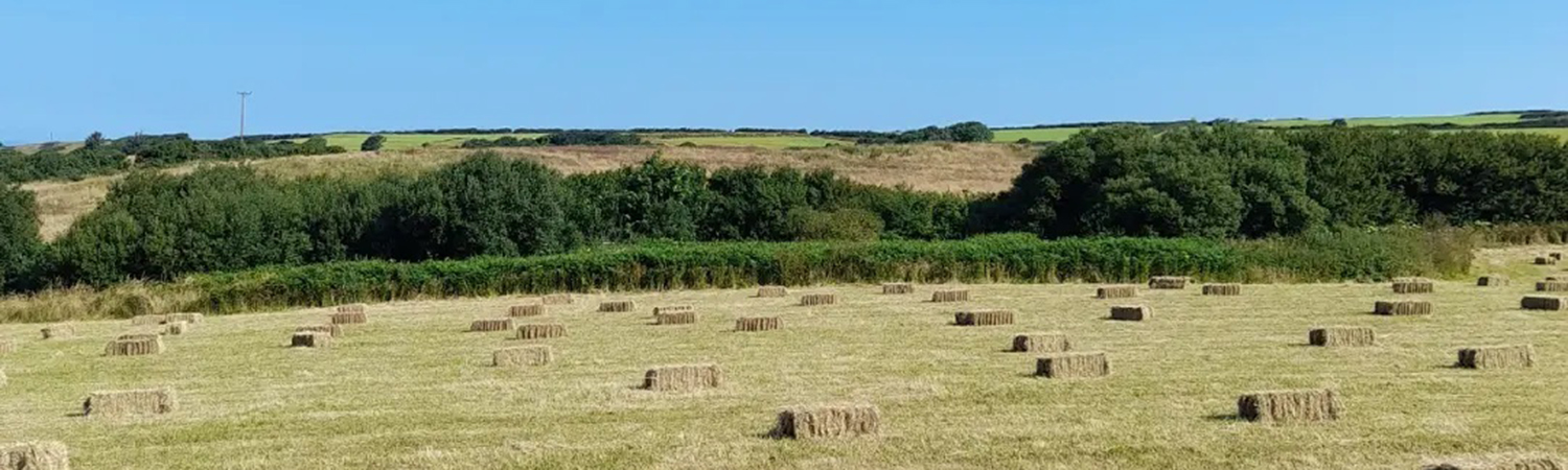 Enjoy a countryside break in North Devon at one of our farm accommodation providers sites.